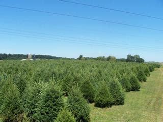 clarks christmas tree farm cochranville pa 19330 610