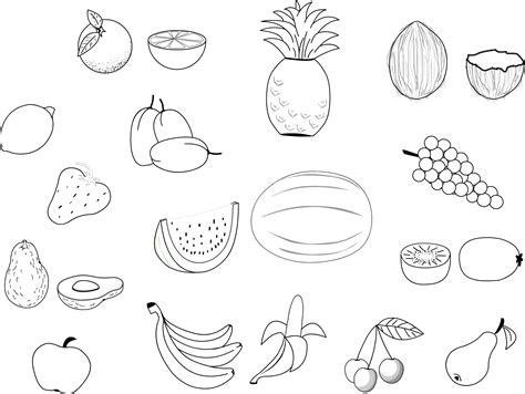 printable fruit coloring pages  kids