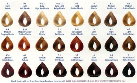 loreal hair color chart loreal hair color reviews shades chart today24news