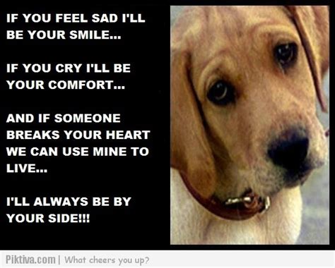 quote about dogs and loyalty quotes quotesgram