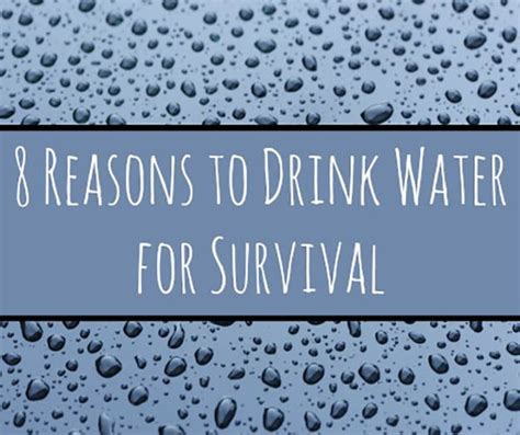 quot emergency preparedness news site quot water for survival 8 reasons why it s important
