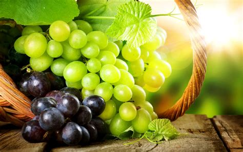 imagenes hd uvas ramos de uvas fondos de pantalla hd wallpapers hd