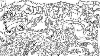 rainforest coloring pages rainforest colotring pages