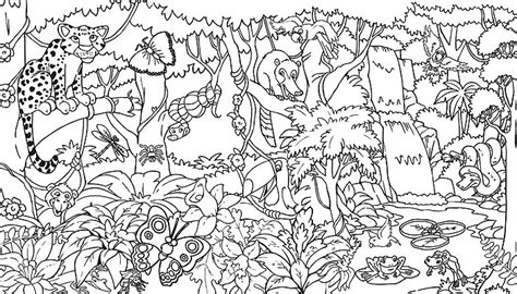 printable coloring pages jungle rainforest coloring pages endangered species coloring