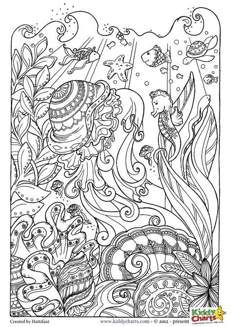 ocean animals coloring pages for adults ocean coloring pages for kids and adults