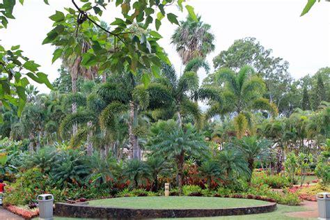 patio dole hawaii vakantie een bezoek aan de dole plantation