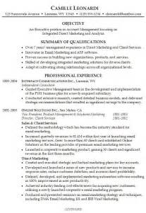 Professional Summary Exles For Resumes by Professional Summary Exles Best Business Template