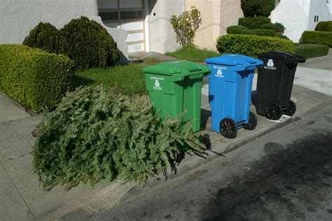 holiday clean up green up how to avoid dumping the