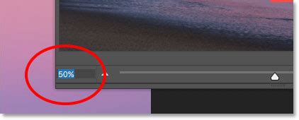 reset zoom tool photoshop how to use the navigator panel in photoshop