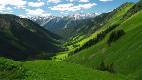 green wallpaper canada barkley valley british columbia canada wallpaper