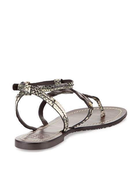 burch phoebe sandal burch phoebe snake embossed flat sandal brown