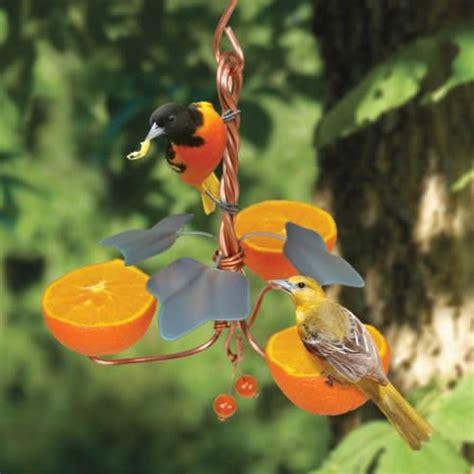 oriole bird feeders nectar fruit bird feeders