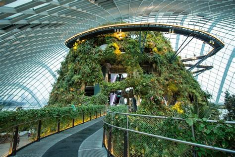 Garden Of Singapore Gardens By The Bay Singapore Top Tips Before You Go
