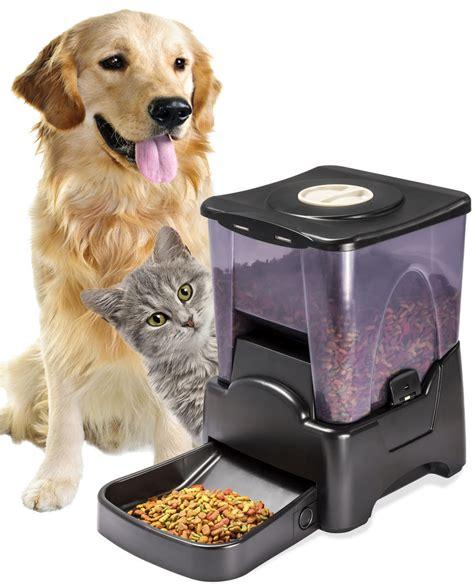 puppy feeder oxgord automatic pet feeder cat programmable animal food bowl auto dispenser ebay