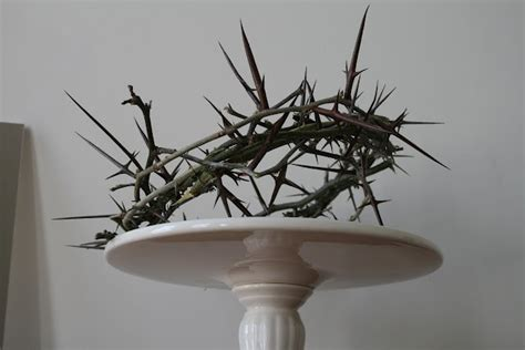17 best images about crown of thorns on crown