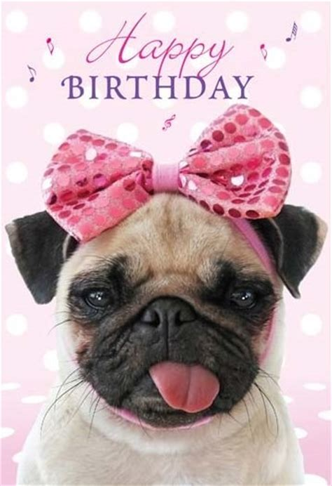 pug saying happy birthday birthday pug wishes birthday pug and birthday images