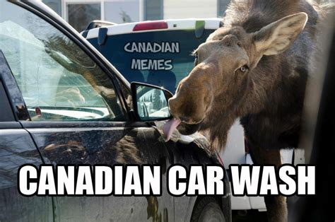 Canada Meme - ahah what the hell test squadron premier star citizen