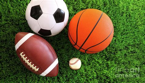 all sports balls pictures to assortment of sport balls on grass photograph by