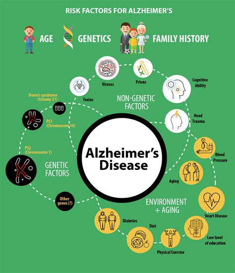 preventing alzheimer s alzheimer s factors prevention steps and foods that prevent or alzheimer s recipes for alzheimer s prevention diet essential spices and herbs books alzheimer s risks causes and prevention kindly