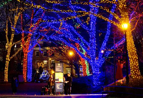 Washington Dc National Zoo Washington Dc Zoo Lights