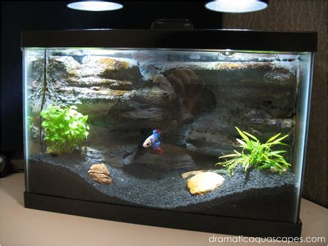 diy aquascape dramatic aquascapes diy aquarium background betta
