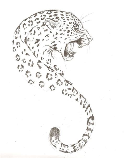 jaguar pattern drawing 14 leopard tattoo designs and sketches