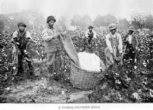 Breeding slaves in the south rich white males but african americans