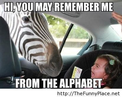 Remember Me Meme - funny zebra meme thefunnyplace