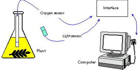 light sensor data logger roger data logging experiments
