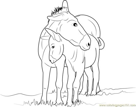 mother and baby donkey coloring page free coloring pages