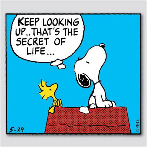 """peanuts on twitter: """"keep looking up. that's the secret of"""
