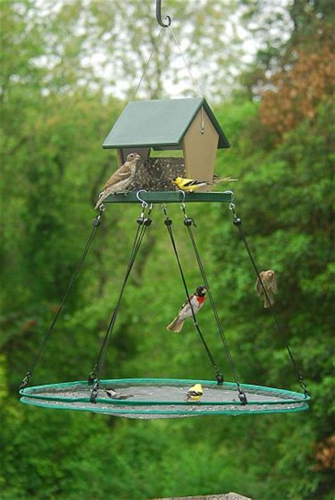 Feeding Set With Juice Feeder Pigeon 1000 images about bird feeding stations on bird feeders bird feeding station and