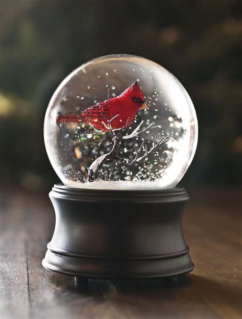 musical cardinal snow globe balsam hill australia