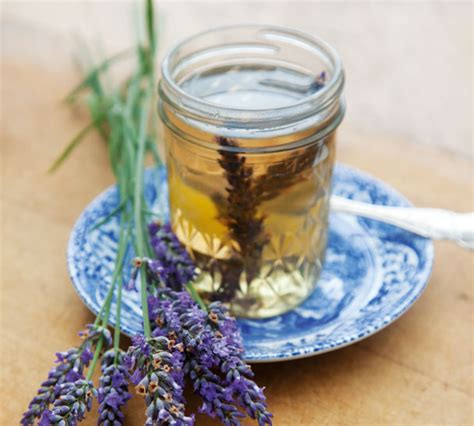 lavender syrup annabel langbein recipes
