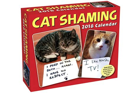 shaming 2018 day to day calendar 10 cat calendars to ring in 2018 pets potential