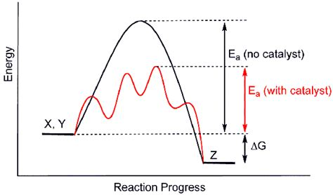 activation energy diagram how does a catalyst actually lower the activation energy