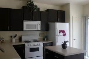Painted black kitchen cabinets gt captivating kitchen cabinet makeover