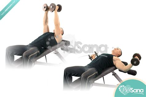 incline bench dumbbell fly incline dumbbell flys