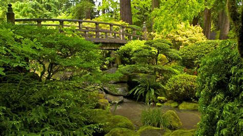 portland japanese garden in portland oregon expedia