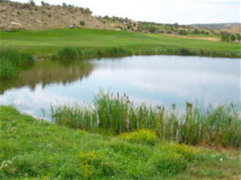 fish pond algae control and aeration treatment systems