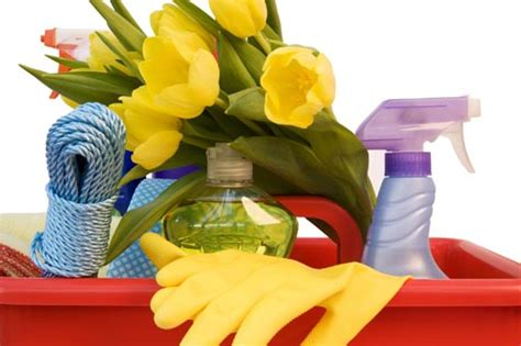 spring cleaners spring cleaning tips apartment cleaning checklists and