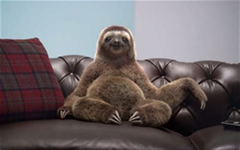 sloth on a couch home furnishing page 5 adbreakanthems