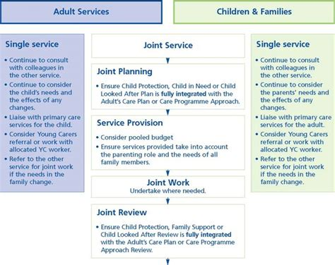 section 47 social services families that have alcohol and mental health problems