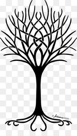 árvore Da Vida fundo png & imagem png - Desenho De Árvore