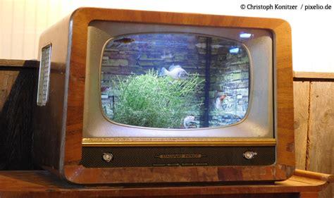 Was Kosten Fertighäuser Wirklich by Stromverbrauch Was Kosten Tv Co Pro Stunde