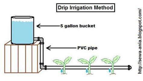drip irrigation diagram drip irrigation diagram to achieve the drip i think i