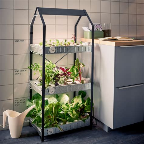 ikea moves  indoor gardening  hydroponic kit