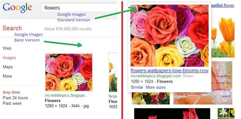 google images basic force google images to show image results in basic version