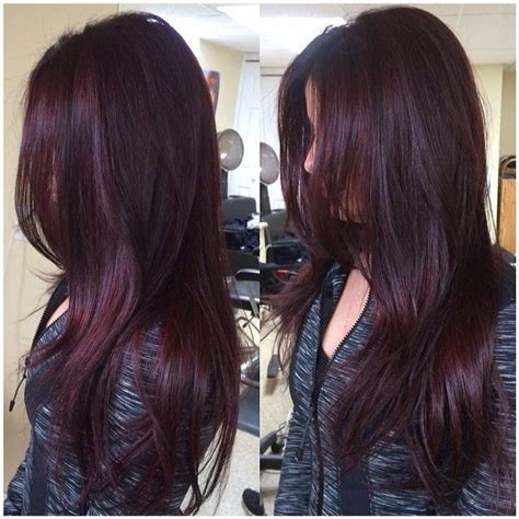 black plum hair color best 25 violet brown hair ideas on plum brown