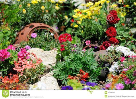 flower garden background flower garden background stock photo image 55786169